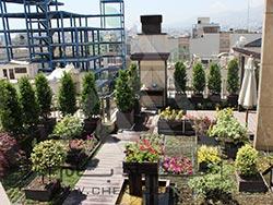 Roof Garden | Kamraniyeh-Tehran