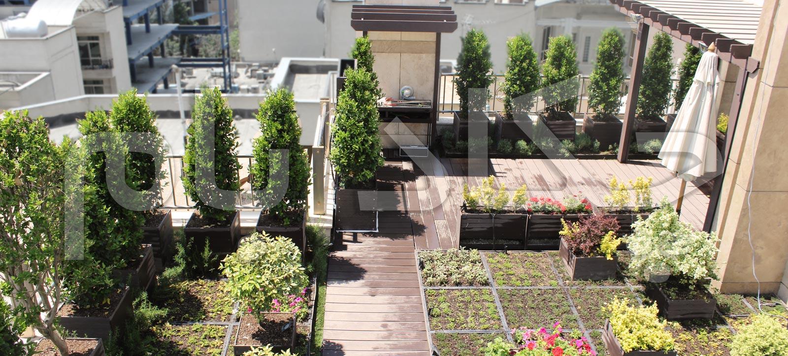 green roof garden chekadbam
