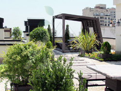 Roof Garden | Farmaniyeh-Tehran