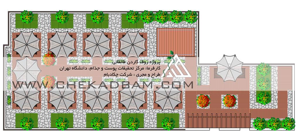 طراحی و نمونه پلان دو بعدی پشت بام سبز روف گاردن ایران تهران طالقانی green roof garden 2d plan cad design tehran iran taleghani