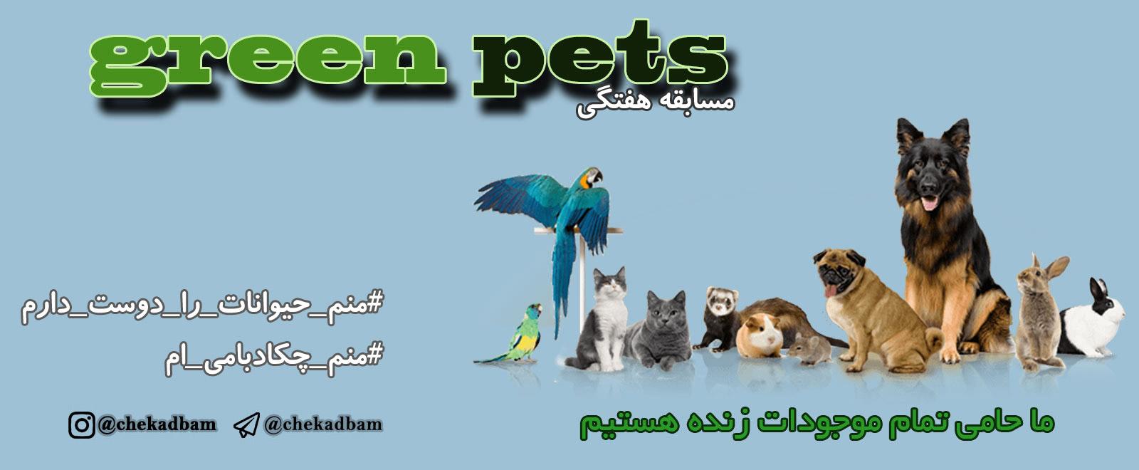بنر کمپین چکادبامی حمایت از حیوانات