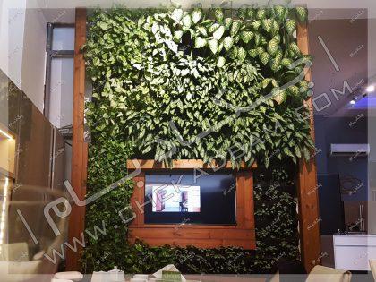 دیوار سبز داخلی گرین وال دیوار زنده تهران