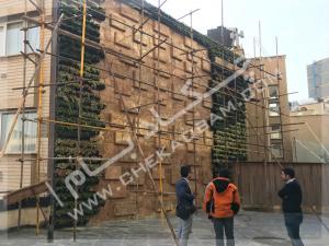 پروژه دیوار سبز آقای نیری- ولنجک (5)