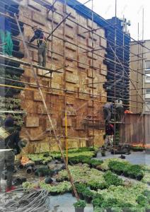 پروژه دیوار سبز آقای نیری- ولنجک (7)
