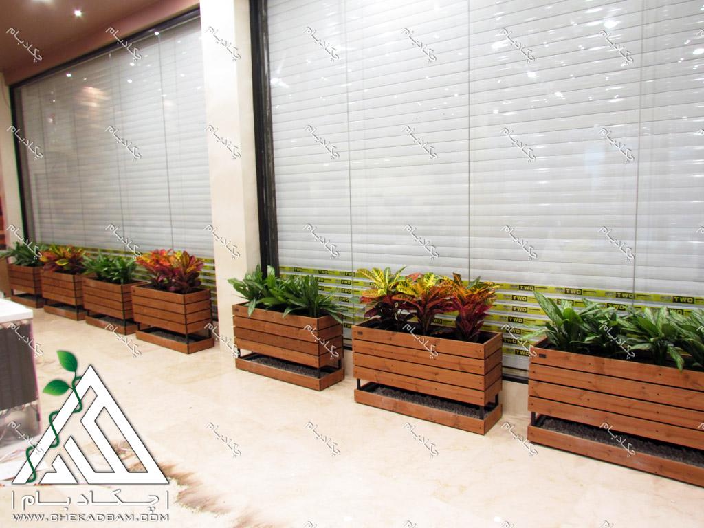 طراحی داخلی سبز مغازه تجاری فلاو باکس گلدان چوبی کافه ویونا سعادت آباد گل کروتن آگلونما green interior design flowerbox croton rushfoil plant aglaonema chinese evergreens