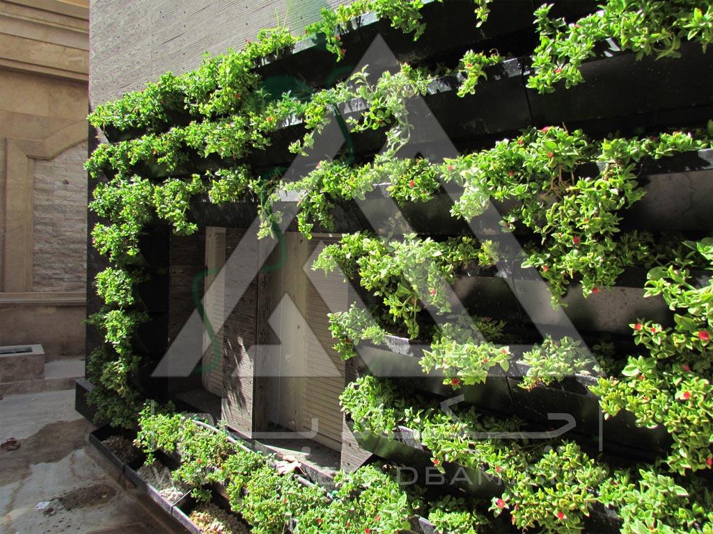 اجرای دیوار سبز مدولار پوشش تاسیسات برق ساختمان گرین وال تهران فرمانیه green wall modular tehran farmaniyeh