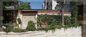 دیوار سبز green wall مدولار حیاط پوشش دیوار حیاط با انواع گیاه رونده و پوششی درخت کاج ستاره ای سرو مورد تهران قیطریه قلندری تهران