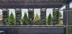 پروژه بام سبز مرزداران