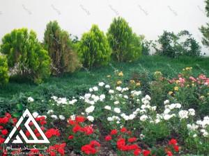 green-landscape-kordan-villa-13