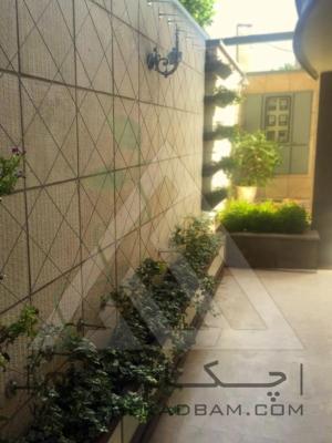 محوطه آرایی حیاط دیوار سبز کابلی