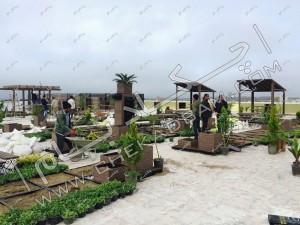 نمای کلی از اجرای روف گاردن در آمل پروژه در حال اجرا و کاشت گیاهان