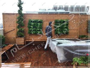 دیوارکوب چوبی ترمووود فلاورباکس چوبی درختچه های لاوسون روی پشت بام