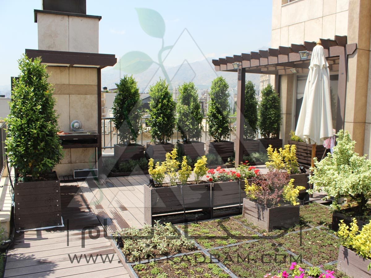 بام سبز تهران کامرانیه چکاد بام روف گاردن پرگولا green roof garden