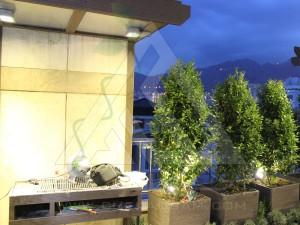 مراحل اجرا-کاشت گیاه-نورپردازی-شب-روف گاردن-بام سبز-کامرانیه-مدولار-پرتابل-پلنترباکس-چوب پلاست-ترموود-فضای سبز-پرگولا-آلاچیق-آتریوم