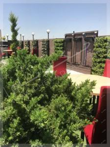 آبنما و فضای سبز بر روی پشت بام پروژه امیرآباد تهران