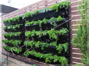 دیوار سبز مدولار در پشت بام واحد مسکونی تهران قیطریه بلوار کاوه