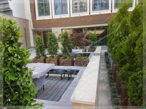 نمای فضای سبز حیاط درختچه های لاوسون یاس هلندی افرا سرخ و میز و نیمکت چوبی ونک تهران