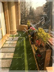 کاشت گل و گیاه مخصوص  تراس کوچک در تهران