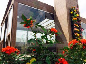 روف گاردن بام سبز ظفر تهران ایران آتریوم چوب پلاست ترمووود گلدان فلاورباکس آلاچیق