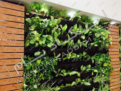 دیوار سبز مدولار گرین وال داخلی دیوارسبز زنده فضای داخلی گیاهان استفاده شده دیوار سبز گلدان های دیواری green wall live greenwall plants