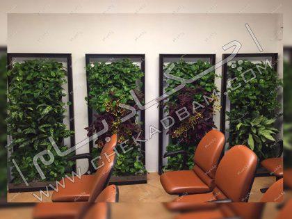 پارتیشن سبز جدا کننده فضای داخلی مطب گیاهان زنده برای تلطیف فضای داخلی معماری داخلی سبز مطب