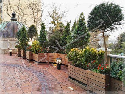 روف گاردن زعفرانیه فلاورباکس و گلدان چوبی و گل و گیاه و درخت روی پشت بام
