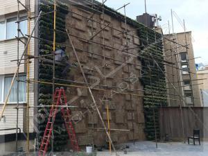 پروژه دیوار سبز آقای نیری- ولنجک (3)