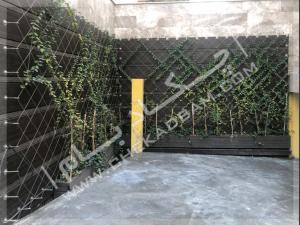دیوار سبز چیتگر-دردشت (2)