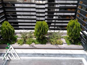 نمای کاشت گیاه بر روی لبه پیشانی پشت بام درختچه های کامیس پاریس ناز فرانسوری تهران پاسداران