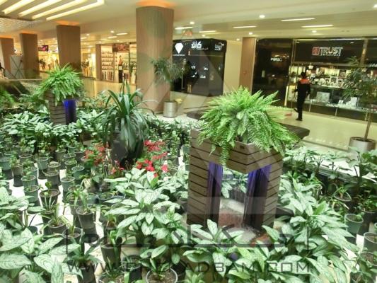آبنما فضای سبز مجتمع لاله پارک تبریز