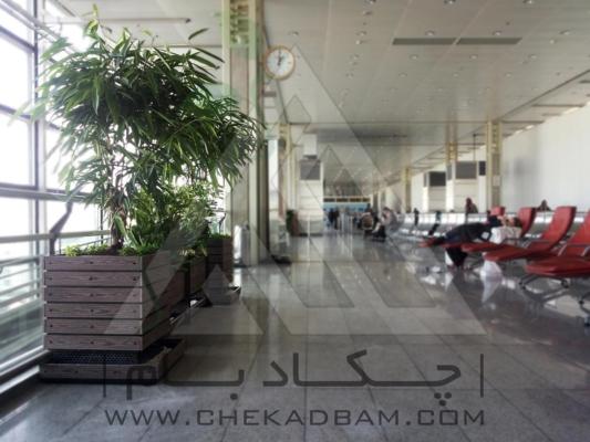 معماری داخلی سبز فرودگاه امام خمینی فلاورباکس چوب پلاست تری باکس نیمکت ترمووود