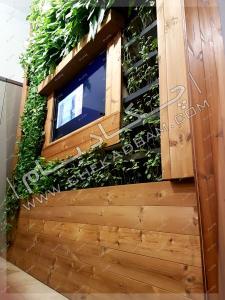 دیوار سبز داخلی گرین وال green wall محمودیه تهران