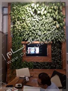 دیوار سبز داخلی گرین وال green wall