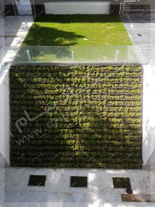 نمای دیوار سبز شیب دار در تهران