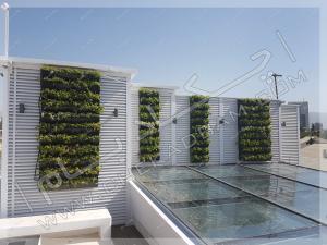 دیوار سبز مدولار روی پشت بام شهرک غرب تهران modular green wall