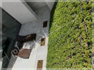 نمای بالا از دیوار سبز شیب دار  شهرک غرب تهران