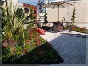 فضای سبز روی پشت بام چتر آفتابگیر و میز و نیمکت فضای باز کاشت کنف نیوزیلندی روی پشت بام