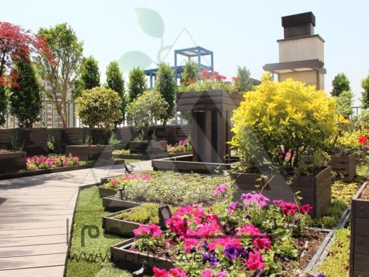 بام سبز روف گاردن کامرانیه، باربیکیو، فلاورباکس، تری باکس، آبنما خانگی، آبنما باغی، ساخت آبنما