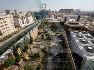 بازدید-مشاوره-طراحی-اجرا-بام سبز-روف گاردن-پونک-مدولار-پرتابل-آلاچیق-پرگولا-وود پلاست-چوب پلاست-ترموود-کاشت گیاهان