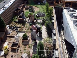 بازدید-مشاوره-طراحی-اجرا-بام سبز-روف گاردن-پونک-مدولار-پرتابل-آلاچیق-پرگولا-وود پلاست-چوب پلاست-ترموود-شن تزئینی-قلوه سنگ تزئینی