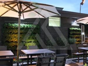 روف گاردن-بام سبز-چوب پلاست-نردبان چوبی-آلاچیق-فلاورباکس-دیوار سبز-مدولار-نمای چوبی-میز و نیمکت-سینی پوششی-سایه بان آفتابی