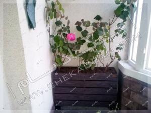 گل و گیاه مخصوص تراس سبز فلاورباکس چوبی در تراس سبز الهیه تهران