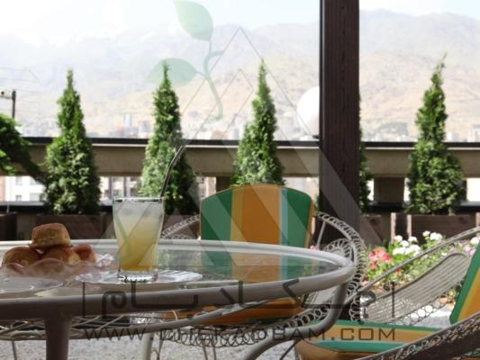 تراس سبز چوب پلاست درختچه گلدان