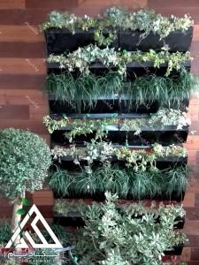 تراس سبز تهران هروی دیوار سبز یا گرین وال در بالکن کوچک سبز