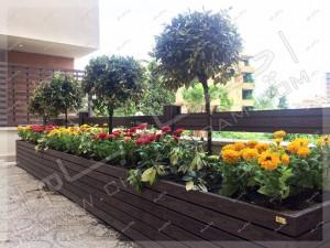 کاشت گل و گیاه و درختچه در فلاروباکس و گلدان چوبی در بالکن هتل